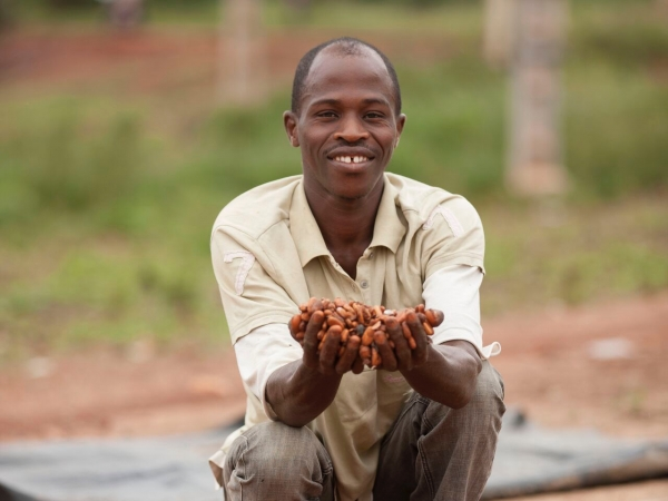 Large-ThrivingPeople_Section2_CocoaHarvestCoteD'Ivoire_2f.jpg
